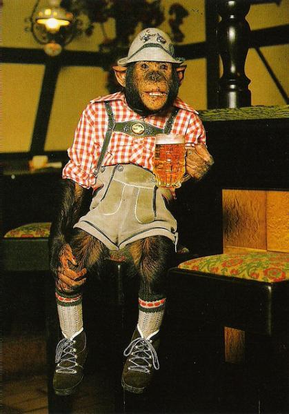 monkey_lederhosen.jpg